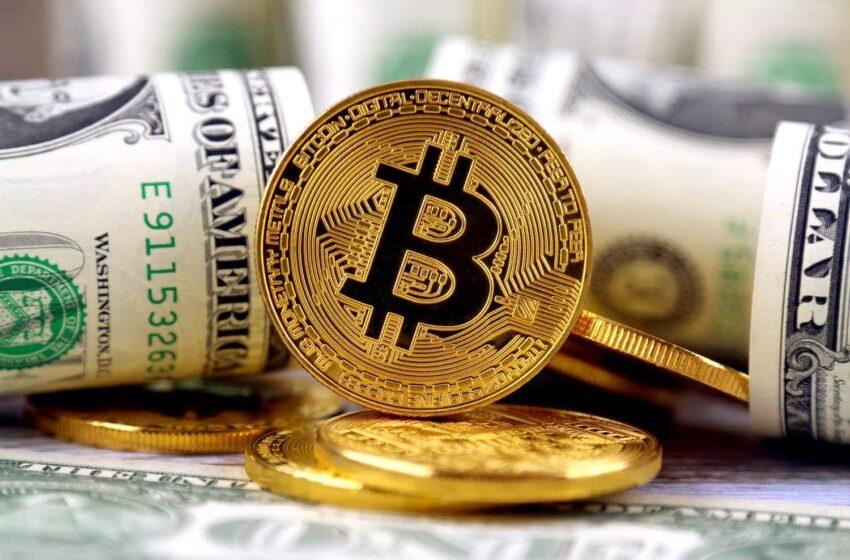 Bitcoin will cross $20k predicts ShapeShift CEO Erik Voorhees